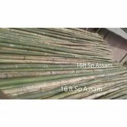 16 Feet Natural Assam Bamboo