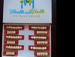 Synthetic Resin Teeth