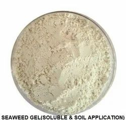 Seaweed Gel(Soluble & Soil Application)