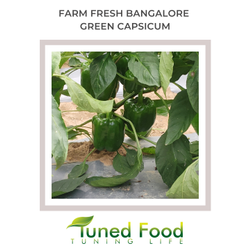 Tuned Food A Grade Bangalore Farm Fresh Green Bell Pepper / Capsicum, Pan India, Packaging Size: 15