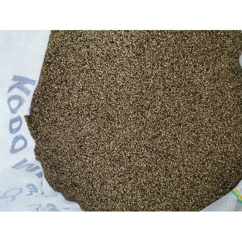 Organic Parboiled Kodo Millet, Packaging Size: 25 Kg, High in Protein