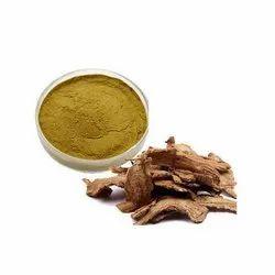 Dong Quai Ext (Angelica Sinensis)-10:1 / 15% Saponin