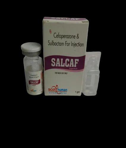 Cafeparazone-500mg & Salbactum- 500mg