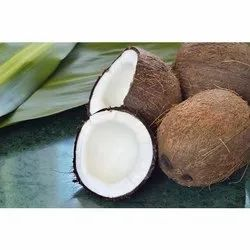 B Grade Dried Husked Coconut