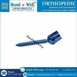 Orthopedic Implant Polyaxial Screw