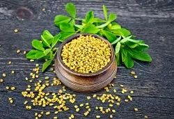 RPGS Fenugreek Seeds, Packaging Type: Bag, Packaging Size: 25Kg to 50Kg
