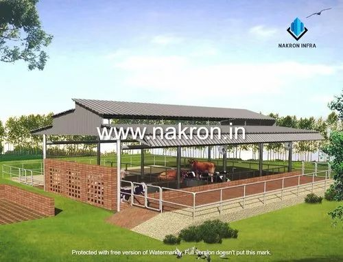 Cow Shed / Cattle Shed