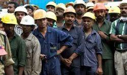 Factory Worker Recruitment Service