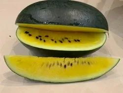 Hybrid Jello Gold F1 Watermelon Seeds, For Agriculture, Packaging Size: 50 Gms Tin