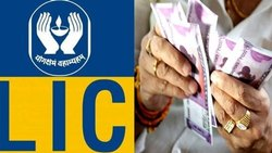 LIC Service Provider
