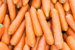 A Grade Carrot, Carton, Packaging Size: 5 Kg