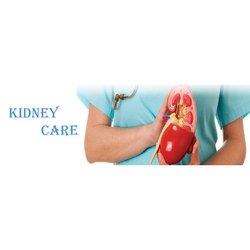 Ayurvedic Kidney Treatment Service