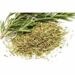 Green Whole Rosemary, Packaging Type: Bag, Packaging Size: 10kg