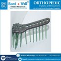 Orthopedic Proximal Humeral Locking Plate