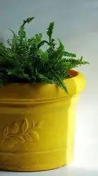 Rectangular Plastic Planters, For Garden