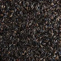 Natural Black Niger Seeds, 78%, Packaging Size: 30 Kg