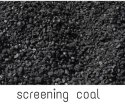 Solid Shaurya Exim Screened Coal, Packaging Type: Loose, Size: 8 To 22 Mm