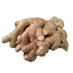 A Grade Fresh Ginger, Gunny Bag, Packaging Size: 50 Kg