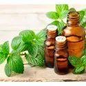 Mentha Spearmint Oil