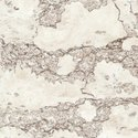 Brown Double Charge Vitrified Tiles, Thickness: 9mm, Size: 600x600mm