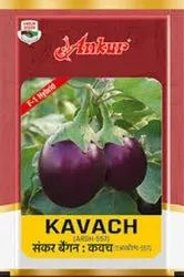 Ankur Research Brinjal Kavach Seed