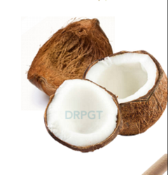 Dry Coconut Husk