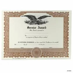 1-4 Days Certificate Printing Services, in Delhi Ncr
