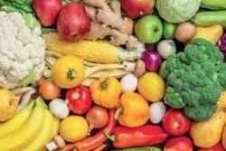 Tamil Nadu Fresh organic Vegetable