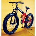 Steel Folding Bicycle