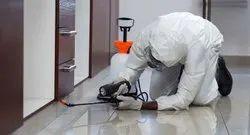 Spray Termite Pest Control Service