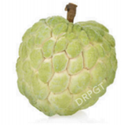 Green Custard Apple