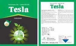 Tebuconazole 10% And Sulphur 65% WG