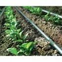 Agricultural Drip Irrigation System