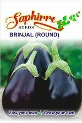 Black F1 Hybrid Brinjal Egg Plant Round Seeds KGP for Agriculture