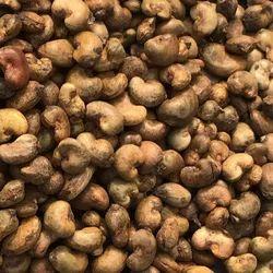 Organic Ghana Raw Cashew Nut, Packaging Type: Sacks, Packaging Size: 80 Kg Bags