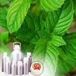 Neomenthol Oil