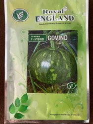 Royal England F1 Hybrid Pumpkin Govind Seed, Packaging Size: 20gm