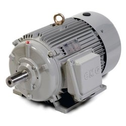 Rewinding and Repairing of 100 HP Three Phase LT Motors