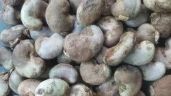 Raw Cashew Nuts, Packaging Type: Sacks, Packaging Size: 80 Kg Bags