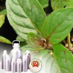 Menthol Powder Melted L-Menthol 96%