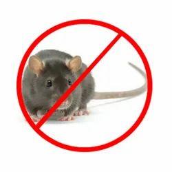 Spray Rodent Pest Control Service