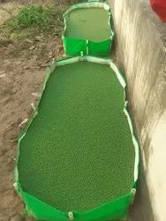 420 GSM HDPE Azolla Bed