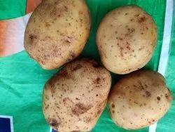 冷藏新鲜的土豆