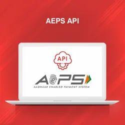 AEPS API, AEPS API Provider