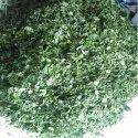 Moringa Dried Leaf