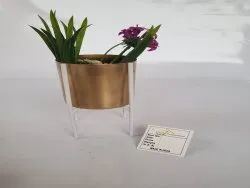 Golden Metal Iron Small Planters for Home, Size: 11x18 cm