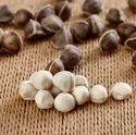Moringa Pure White Seed Kernel