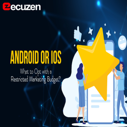 Online Mobile Application Development Service, Development Platforms: Android And IOS