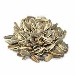 Natural Black Sunflower Seeds, For Agriculture, Packaging Size: 10 Kg, 20 Kg