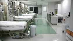 Hospital White Cotton Bed Sheets